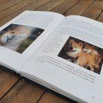Shiba boek binnenkant