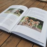 Shiba book inside pages